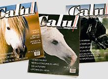calul_magazin