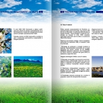 Environmental Report - detail 1