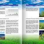 Environmental Report - detail 4